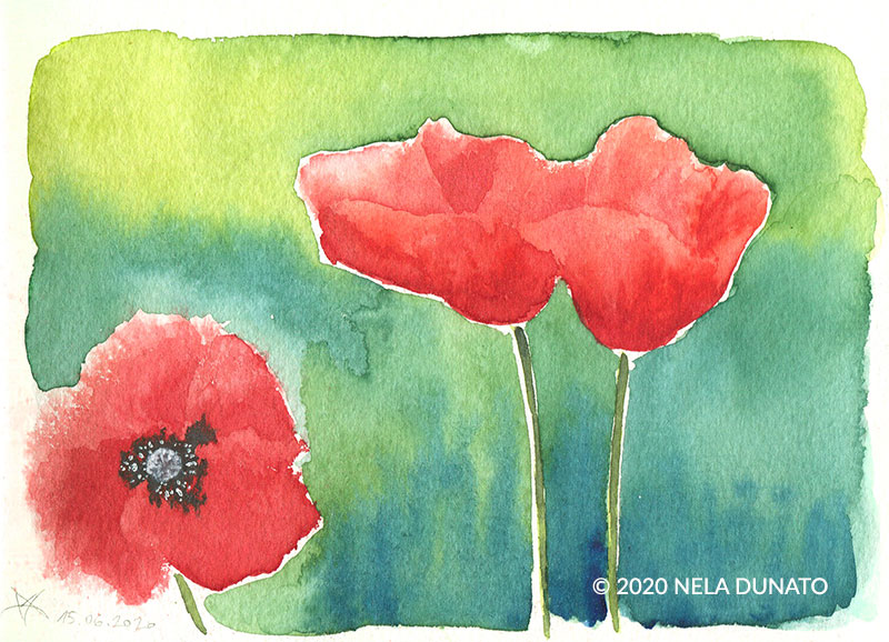 Expressive watercolor poppies by Nela Dunato