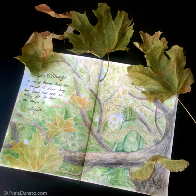 Inspiration from Nature: Maple Elemental