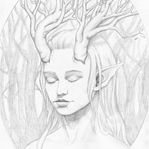 Daughter of the Forest study