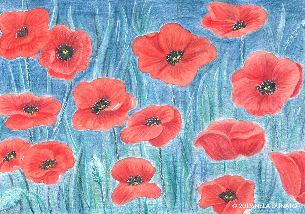 Dreaming in the poppy fields - mixed media drawing - detail by Nela Dunato