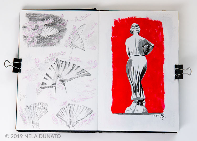 Sketchbook drawings - studies of swallowtail butterflies (left) and a fountain statue (right)