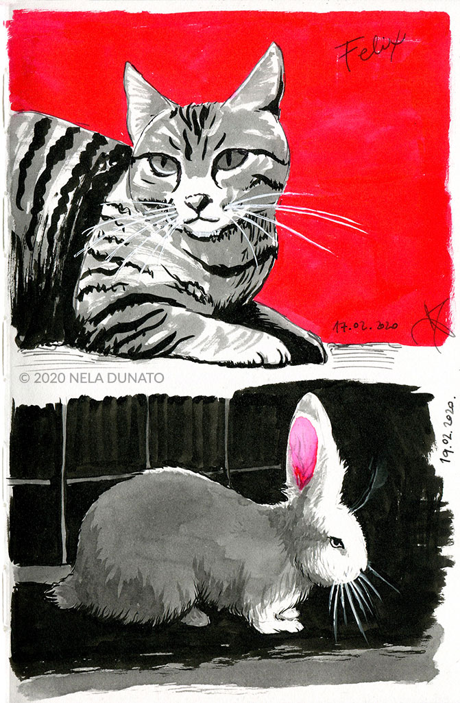Tabby cat and bunny ink sketches by Nela Dunato